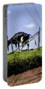 Cows - Costa Rica Portable Battery Charger