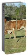 Cows Grazing Portable Battery Charger
