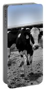 Cows Three In One Portable Battery Charger