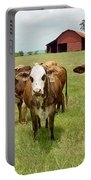 Cows8931 Portable Battery Charger
