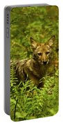 Coyote Of The Woods Portable Battery Charger