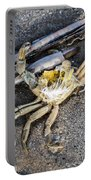 Crab With A Feather Portable Battery Charger