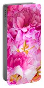 Crabapple Impressions 2 Portable Battery Charger