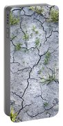 Cracked Earth Background Portable Battery Charger