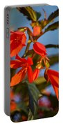 Crackling Fire Begonia Portable Battery Charger