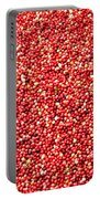 Cranberry Harvest 3 Portable Battery Charger