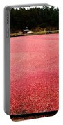 Cranberry Harvest 4 Portable Battery Charger