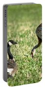 Crane And Friends Portable Battery Charger