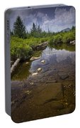 Creek In Vermont Portable Battery Charger