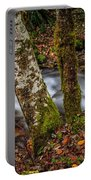 Creek With Trees Portable Battery Charger