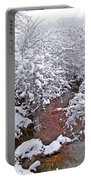 Creekside In The Snow 3 Portable Battery Charger