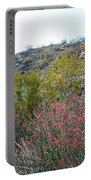 Creosote And Chuparosa On Henderson Trail In Santa Rosa-san Jacinto Nmon-ca Portable Battery Charger