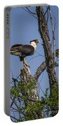 Crested Caracara Portable Battery Charger