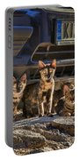 Cretan Cats-1 Portable Battery Charger