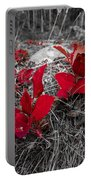 Crimson Foliage Portable Battery Charger