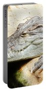 Crocodile Fractal Portable Battery Charger