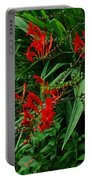 Crocosmia In Red Portable Battery Charger
