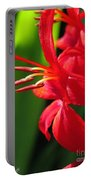 Crocosmia Named Lucifer Portable Battery Charger