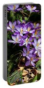 Crocus Amongst The Leaf Litter Portable Battery Charger