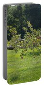 Crooked Apple Tree Portable Battery Charger