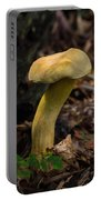 Crooked Stype Boletaceae Portable Battery Charger