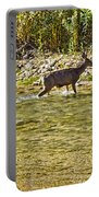 Crossing The River Portable Battery Charger