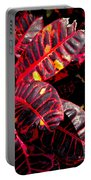 Croton Leaves In Black And Red Portable Battery Charger