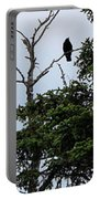 Crow - Black  Bird - Loud Call Portable Battery Charger