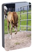 Crow Hopping Filly Portable Battery Charger