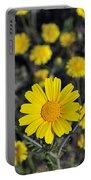 Crown Daisies Portable Battery Charger