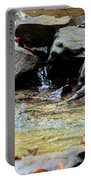 Crystal Clear Waters Of Hurricane Branch Portable Battery Charger