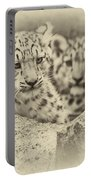 Cubs At Play Portable Battery Charger