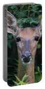 Curious Doe Up Close Portable Battery Charger