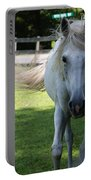 Curious Horse Portable Battery Charger