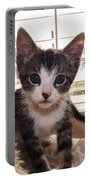 Curious Kitten Portable Battery Charger