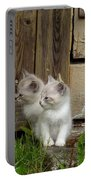 Curious Kittens Portable Battery Charger