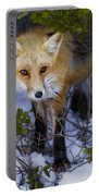 Curious Red Fox Portable Battery Charger
