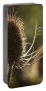 Curly And Spiky. Portable Battery Charger