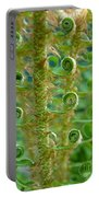 Curly Fern Portable Battery Charger