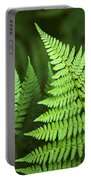 Curved Fern Leaf Portable Battery Charger