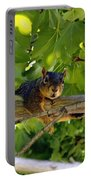 Cute Fuzzy Squirrel In Tree Portable Battery Charger