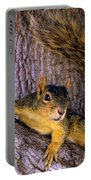 Cute Fuzzy Squirrel In Tree Near Garden Portable Battery Charger