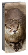 Cute Otter Portrait Portable Battery Charger