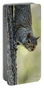 Cute Squirrel  Dare Me Portable Battery Charger