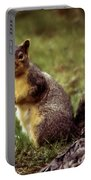 Cute Squirrel Portable Battery Charger by Robert Bales