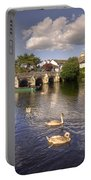 Cygnets At Christchurch  Portable Battery Charger