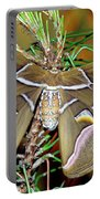 Cynthia Moth Portable Battery Charger