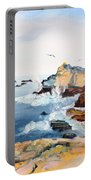 Cypress And Seagulls Portable Battery Charger