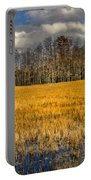 Cypress Marsh Portable Battery Charger