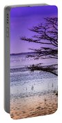 Cypress Purple Sky 2 Portable Battery Charger